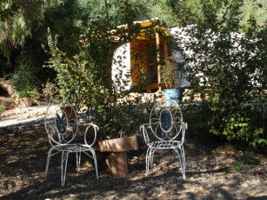 Orange grove to yurt