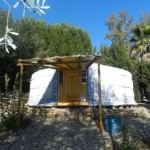 Yurt Holiday